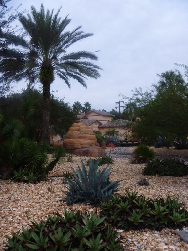 Rancho Photos P1010554