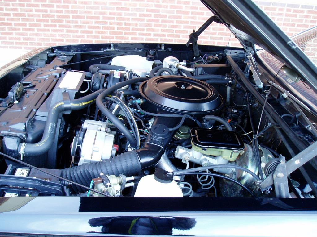 Oldsmobile Cutlass Calais '83 américain...CHECKEZ CA!!!! 83blackolds43