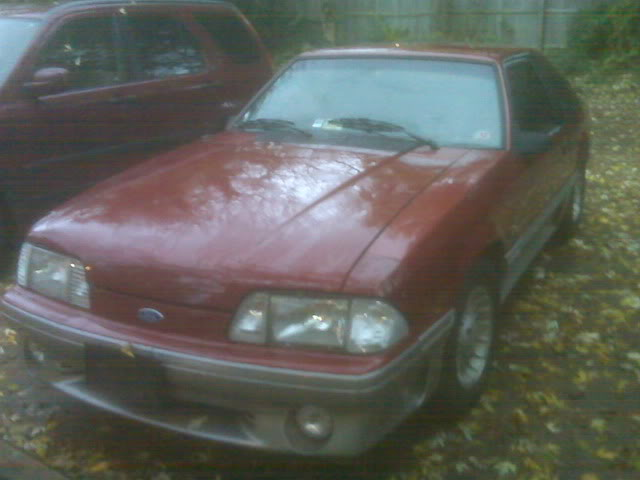 1990 Mustang GT Parts Car or Fixer-Upper - $2000 IMG00035