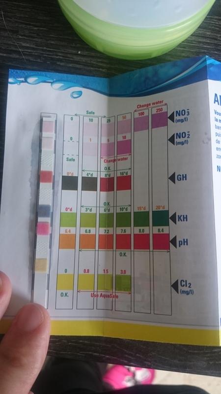 Besoin d'aide pour un aquascaping 96L - Page 2 DSC_0034_zpshtwvxpzl
