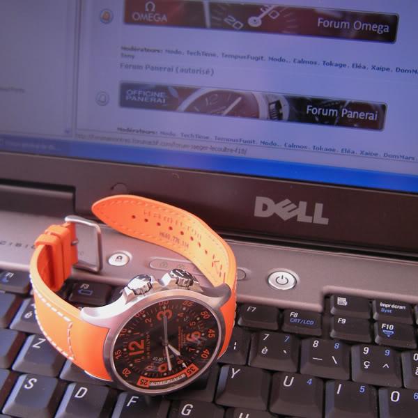 la taille  de vos poignets et celui de vos montres - Page 3 HAMILTON001