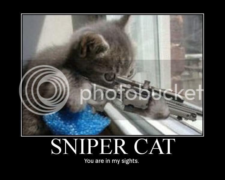 Funny S&!T V2. Snipercat