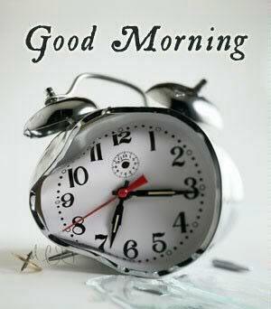 Salam au forum Good-morning