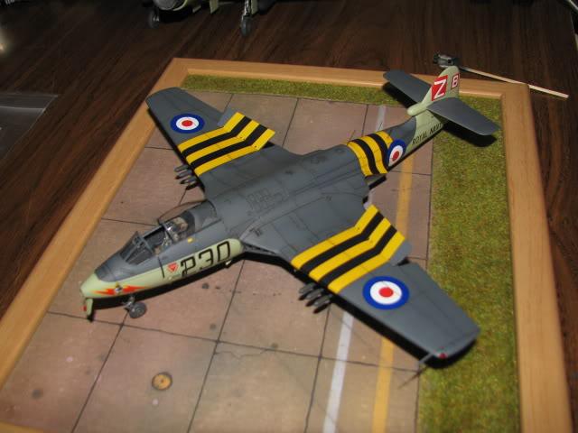 Seahawk  -  finished IMG_1314