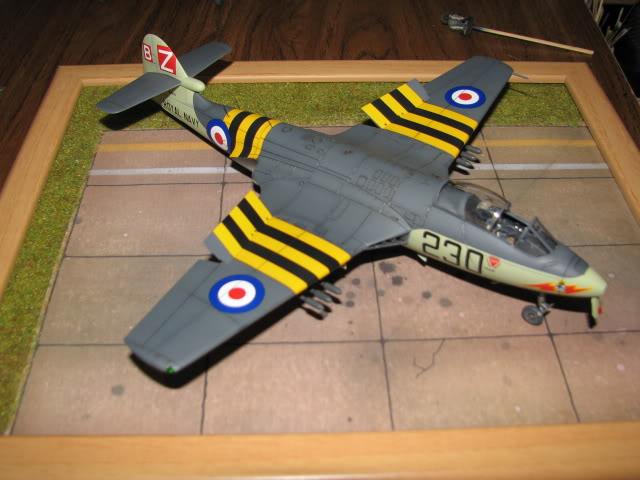 Seahawk  -  finished IMG_1315