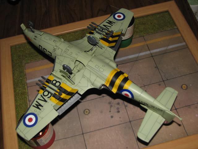 Seahawk  -  finished IMG_1318