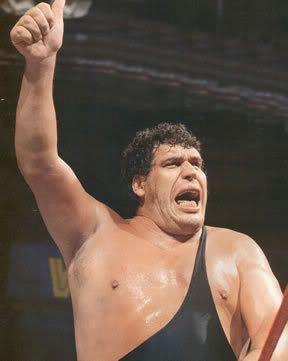 """Macho Man"" Randy Savage vs Andre The Giant AndreTheGiant001"