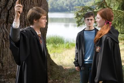 Harry Potter et l'Ordre du Phoenix : Z1 11/12 199657