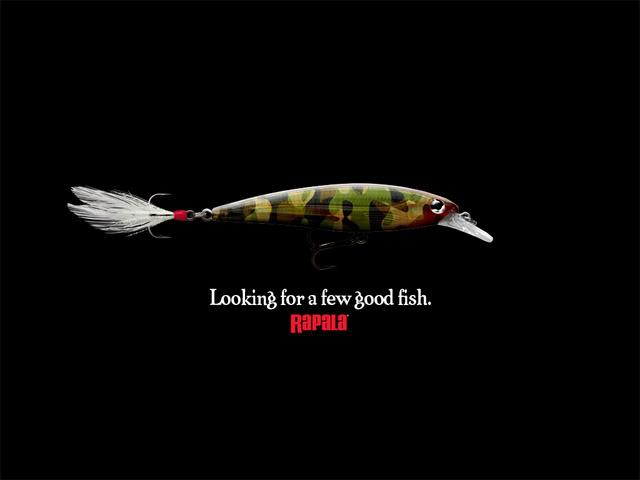 sembang sembang sembang kawan kawan kawan A_few_good_fish-1