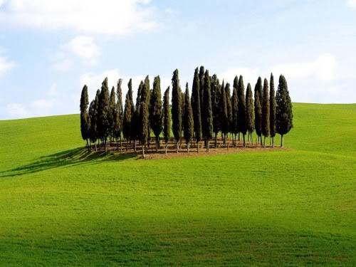 ايطاليا روعة Italy20005