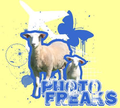 Photofreaks