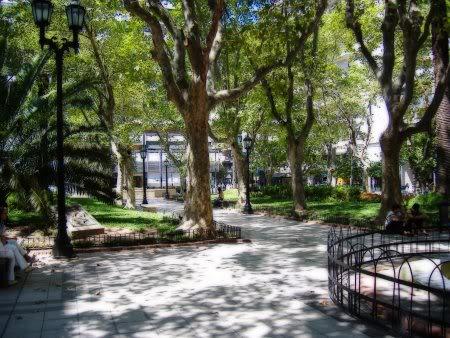 PLAZA DE LA VILLA Plaza-pringles-orton-450px