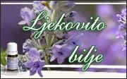 Prijateljske stranice Biljebanner-1