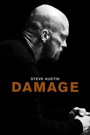 Steve Austin DamageSteve