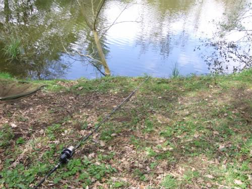 MARGIN FISHING  Stalkingbay001