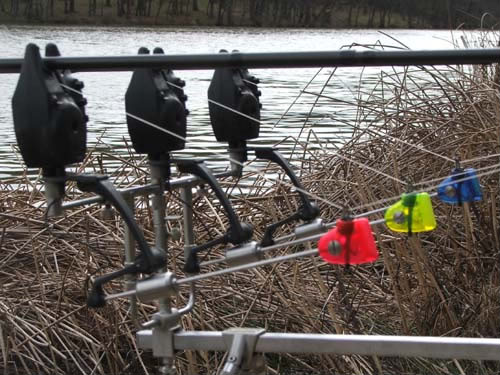 whats swinger/indicators do you prefer for carping? Zeds001