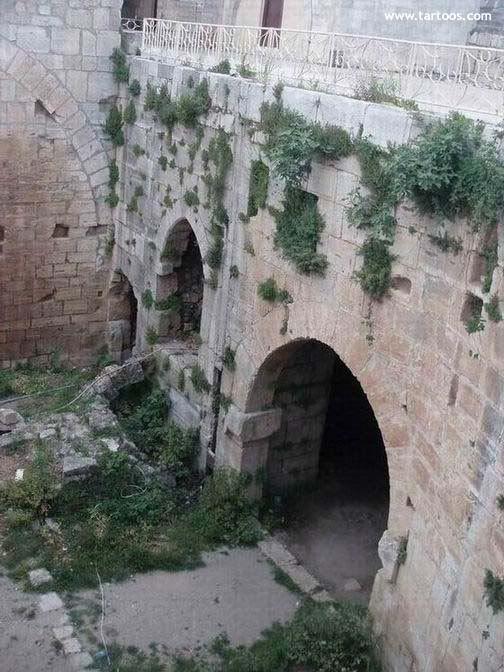 صور من قلعة الحصن Alhoson-castel202450820177