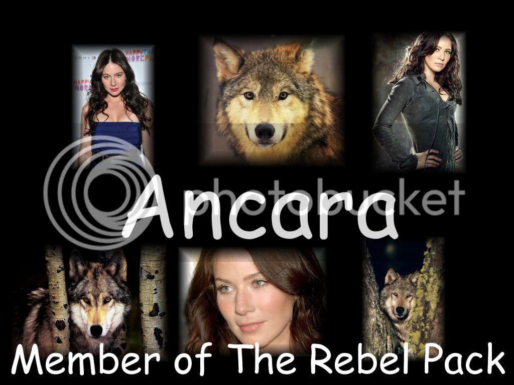 The Rebel Pack Ancara
