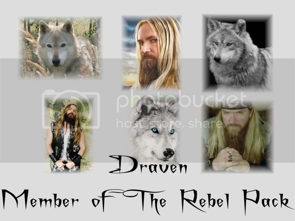 The Rebel Pack Draven