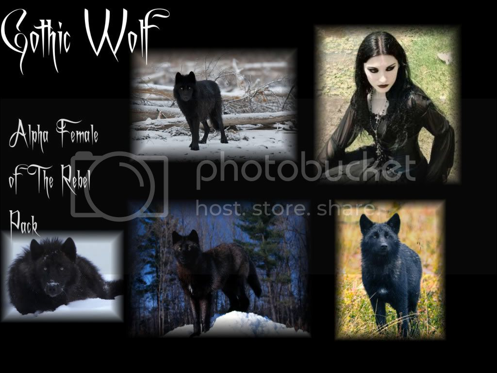 The Rebel Pack GothicWolf-1