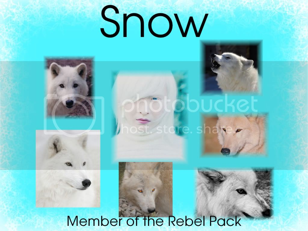 The Rebel Pack Snow