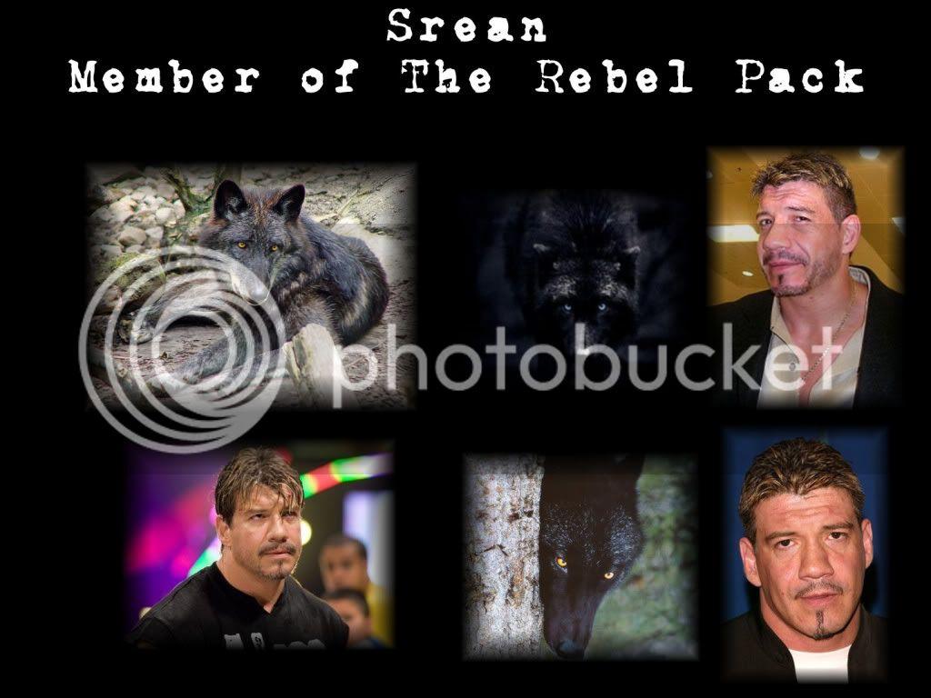 The Rebel Pack - Page 2 Srean