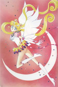 Senshi Character Guidelines Venusresize1