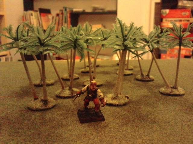 Jungle ruins....and Lustrian stuff I've made. Davespics067
