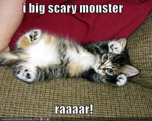 [Game] Funny pictures thread ~ - Page 2 Funny-pictures-cute-fierce-kitten