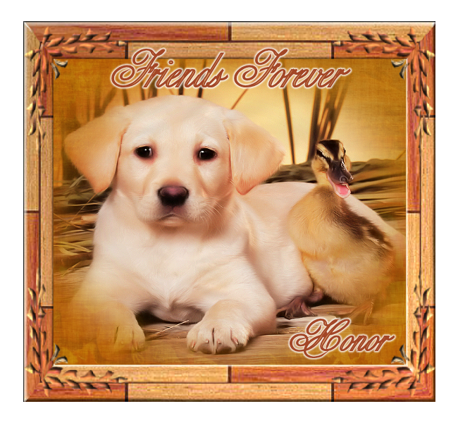Top Dog Friends%20forever_zpsrro15aon