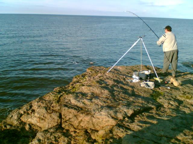 FISHY WEEKEND 4ROGERLANDINGDOG