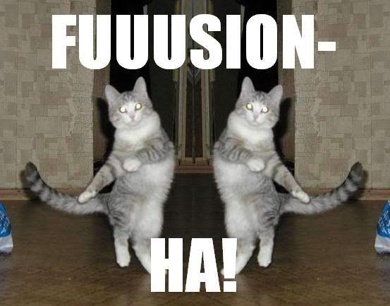 Fusion avec Pixar Day Cat-doing-DBZ-fusion