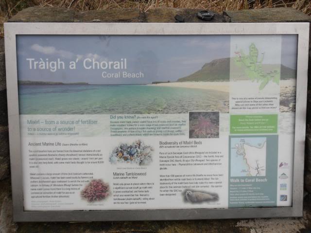 Isle of Skye: To the Light House SAM_0502