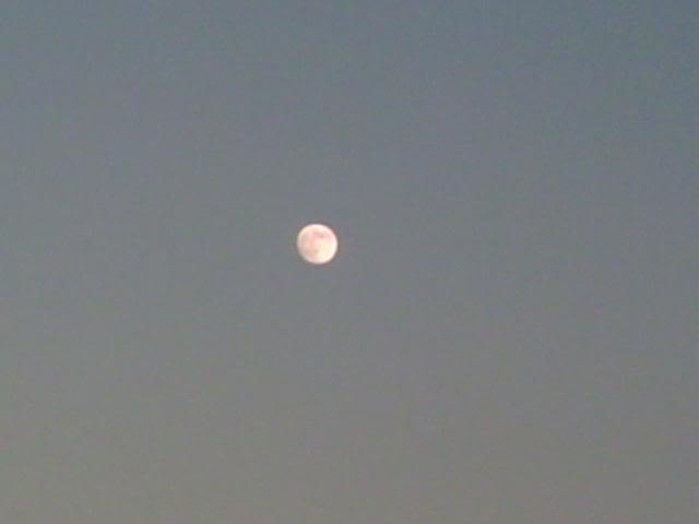 Rhyl  09.01.2009  'Bad Moon Rising Beach9109003