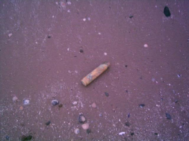 Ammo bait news bullet in Bulletin004