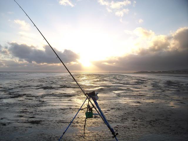 Castwatch  - A Denbighshire Fish-Aware Innitiative - Page 2 Whilstyouweresleeping001