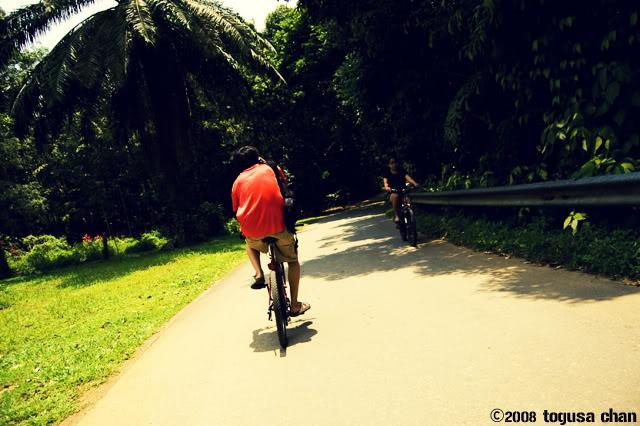 4th October 2008:  Pulau Ubin Outing DSC_8209e