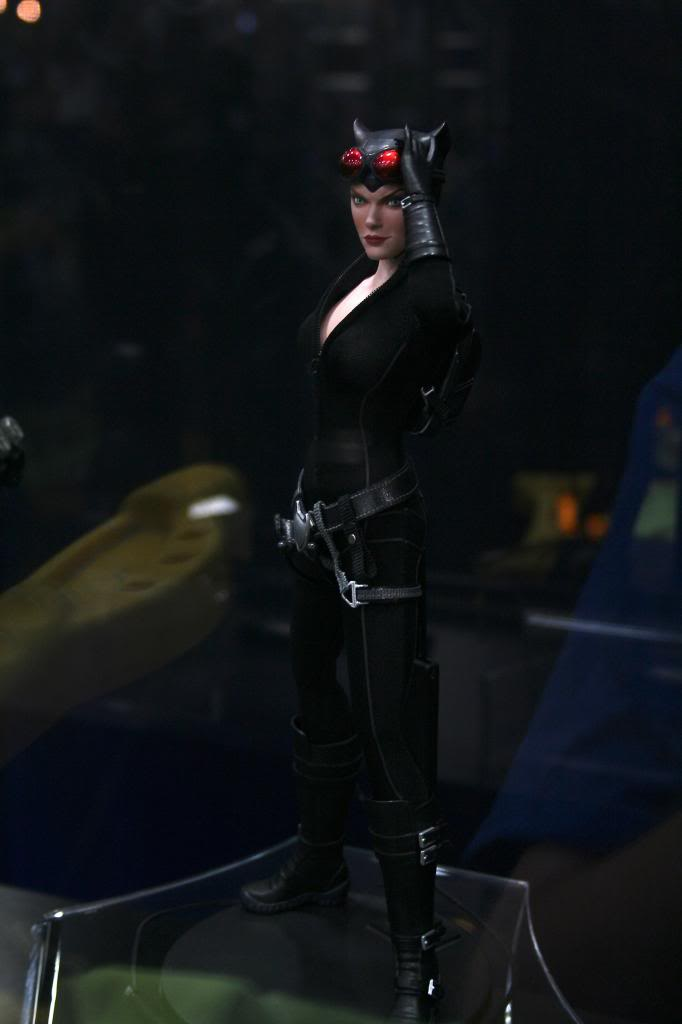 DC - CATWOMAN  IMG_3484_zps45d2cb51