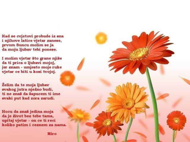Stihovi u slici - Page 8 Kadsecvetoviprobudeizsna-Miro