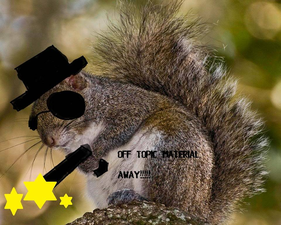 The Weekly Rant. Made by BorderlineStupi - Page 3 Squirrel