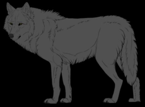 Werewolves or Lycanthropes Grayclan.lineartbykfcemployee_zpsrztepiyf