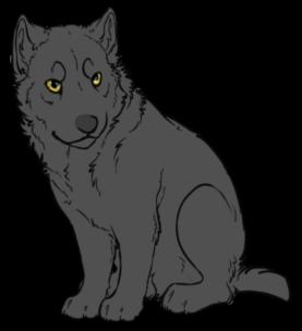 Werewolves or Lycanthropes Graywerepup1_zpsgqmuqbfe