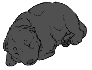 Werewolves or Lycanthropes Graywerepups_zpsntezcoiw