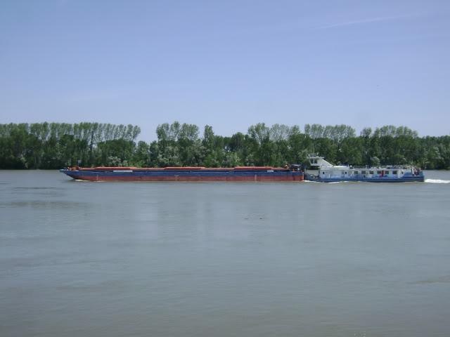 Rijeka Dunav Picture5543