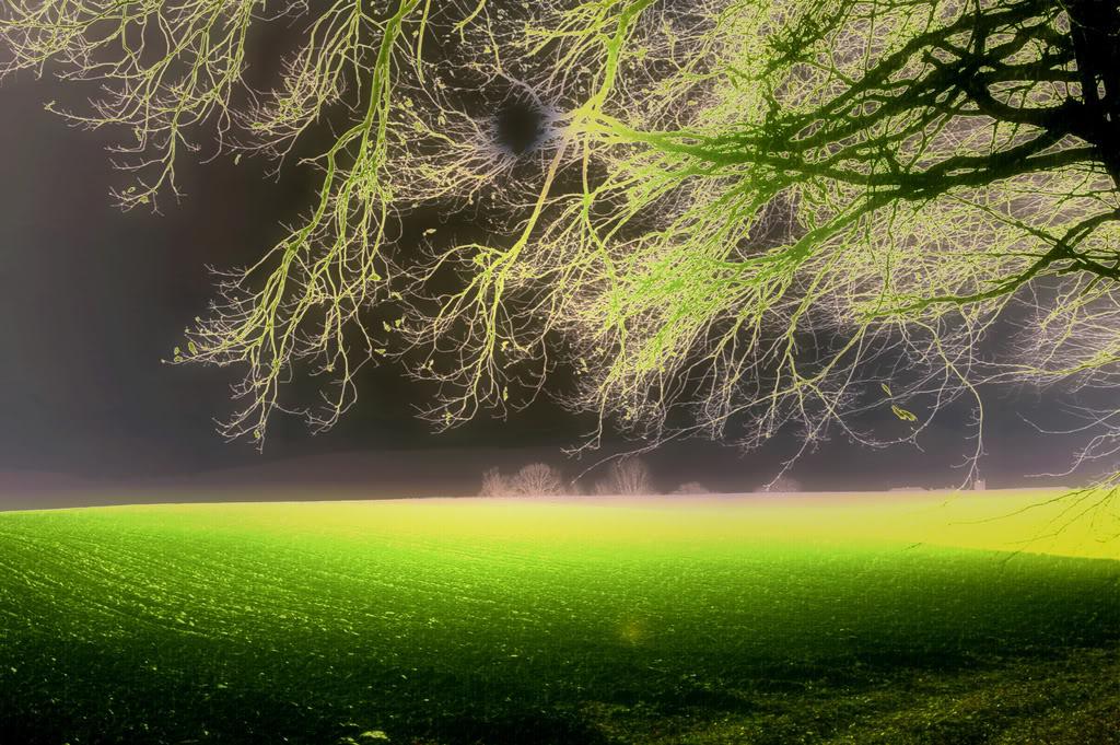 2204244376_a4a8684f64_b.jpg fantasy land image by y4ktxtclan