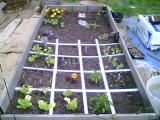 Welcome to my garden Dda7401d