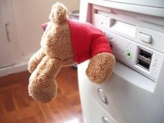 Household tips Usb_key_bear
