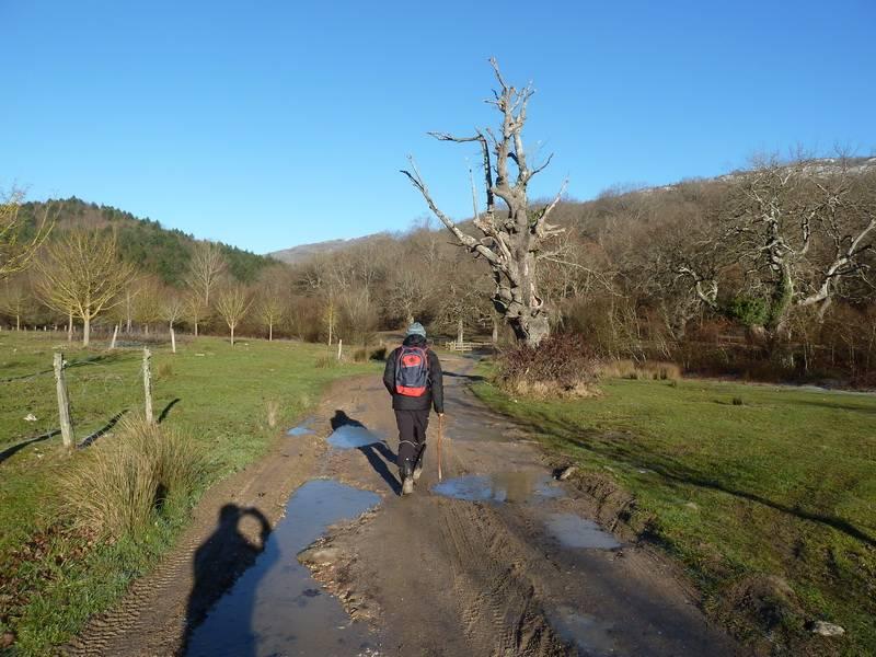 ALGORRI (El viejo camino de Lakuntza) P1100949_resize