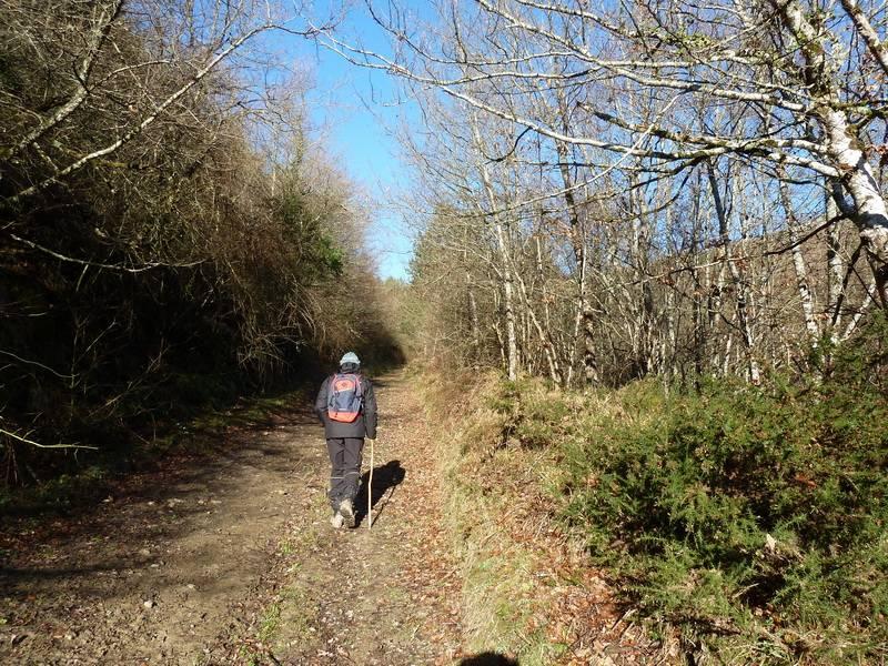 ALGORRI (El viejo camino de Lakuntza) P1100950_resize