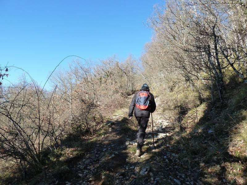 ALGORRI (El viejo camino de Lakuntza) P1100954_resize